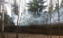 Пожаловаться на дым в пожарную инспекцию ТиНАО